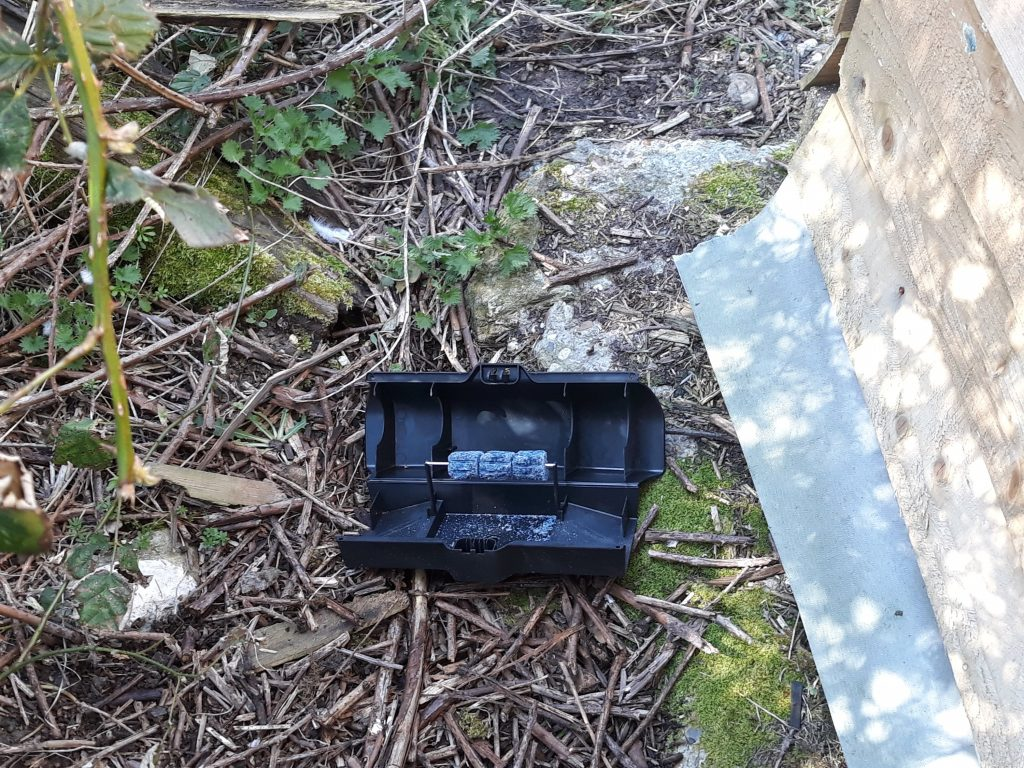 Rat box by Olde English Pest Control, Kent, Surrey a