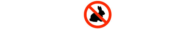 Rabbit Control in Kent, South East, Surrey, Sussex